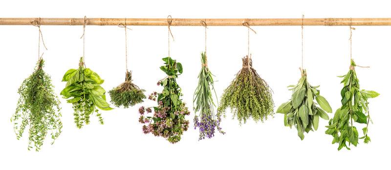 Village herbs